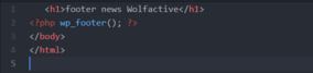 WordPress Demo Footer