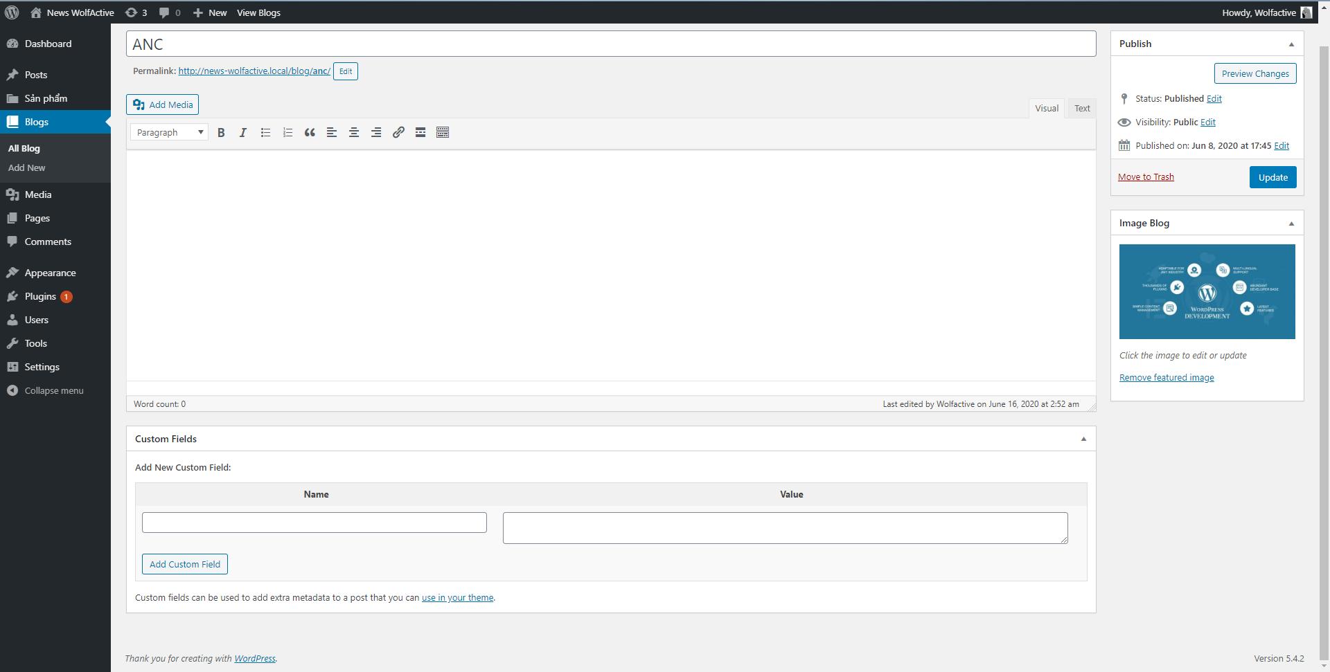 Custom Field WordPress