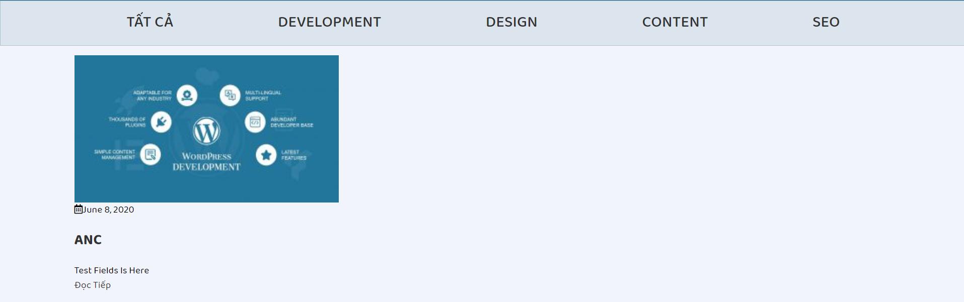 Display Custom Field WordPress