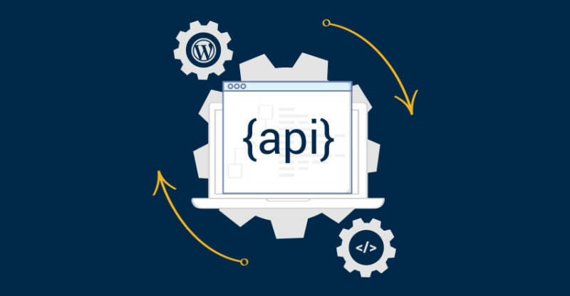 wolfactive-custom-search-api-wordpress